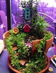 garden in broken pot